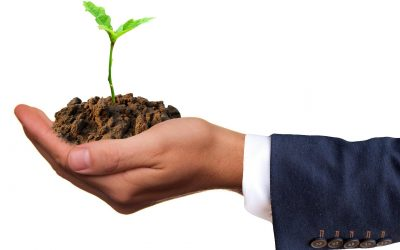 Starting New Clubs: Why We Must Continue to Plant the Seeds of Rotary